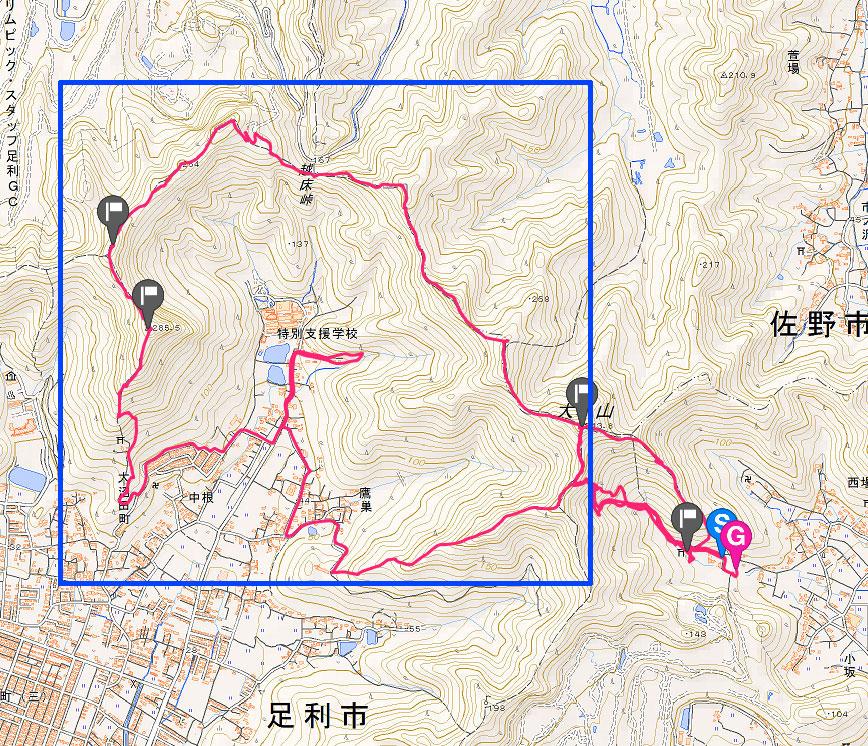 大坊山コース