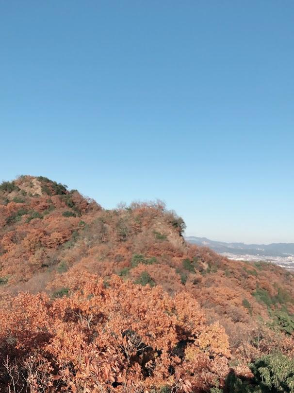 大小山 冬景色