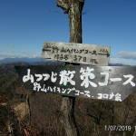 山つつじ散策コース