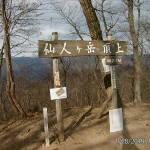 仙人ヶ岳頂上