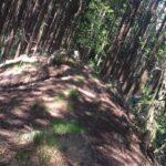 行道山浄因寺から名草巨石群